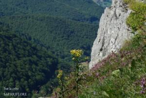 Crete_Cabrespine-wp