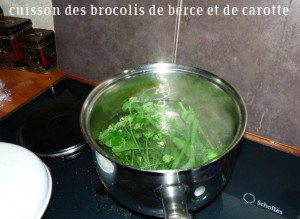 Brocolis-Berce