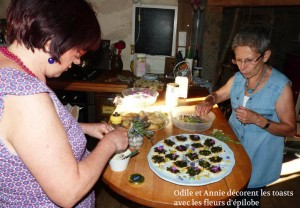Toasts-Epilobe-Annie-Odile