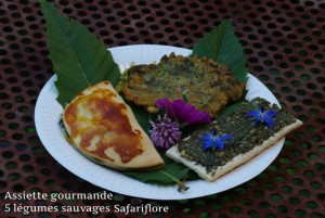 Assiette-gourmande1-fk