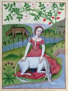 Licorne-Image-MattheusPlatearius