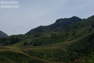 Monts d'Olme