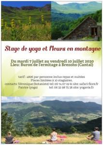 preview-StageYoga-fleurs-juillet2020